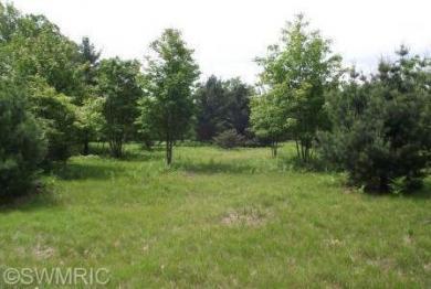 N Porter Creek, Free Soil, MI 49431