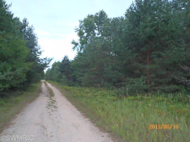 Nine Mile Road, Kaleva, MI 49645