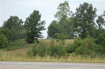 Photo of 16 Acres W Polk Road, Hart, MI 49420