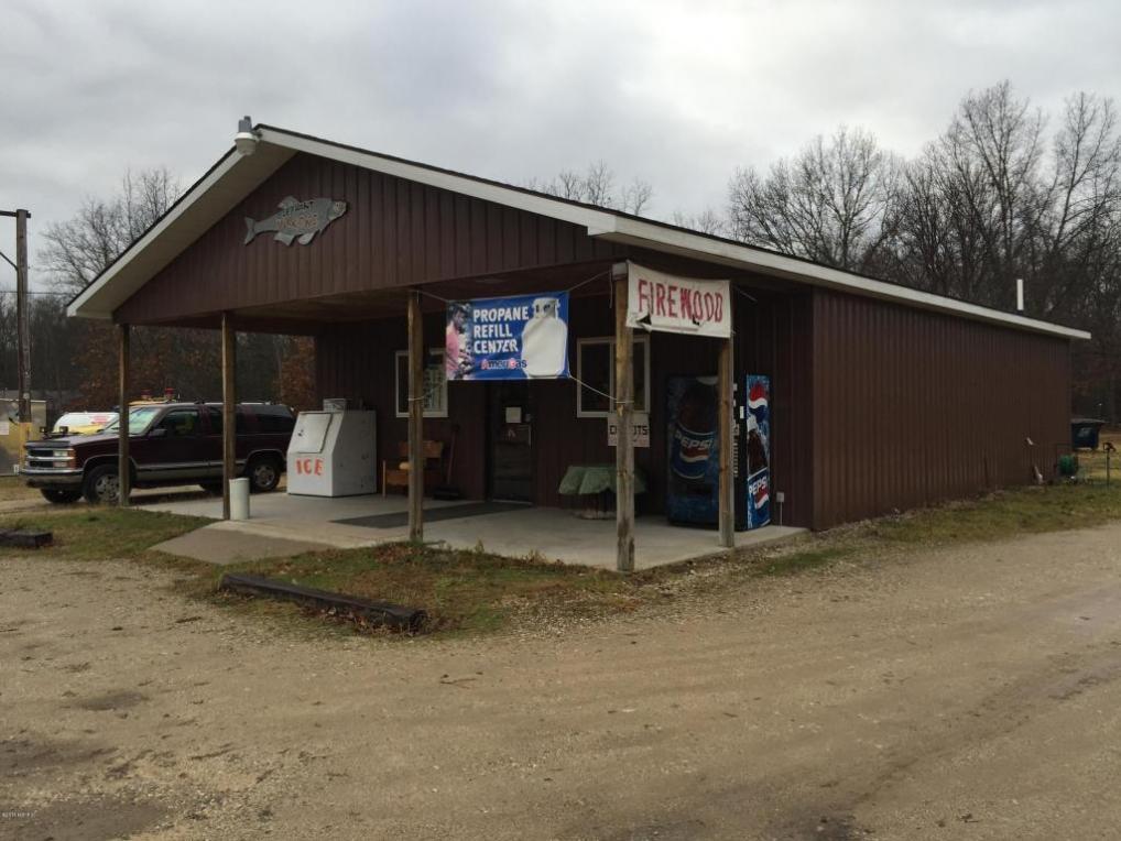7969 N Bass Lake Road, Irons, MI 49644