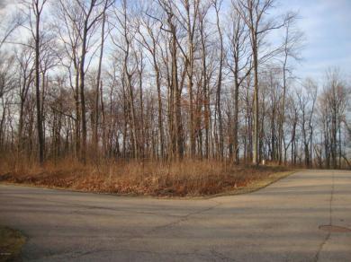 17656 Summerhill Lane, New Buffalo, MI 49117