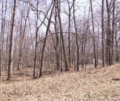 Photo of Lot 256 Chickasaw Trail, Branch, MI 49402