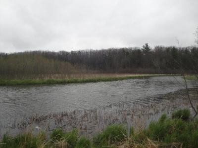 Photo of Transfer Site Road, Pentwater, MI 49449