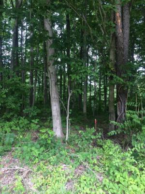 Photo of Red Bud Trail N, Buchanan, MI 49107
