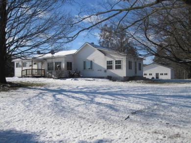 8095 W Cannonsville, Lakeview, MI 48850