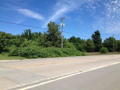Photo of 4 Acres Polk Road, Hart, MI 49420
