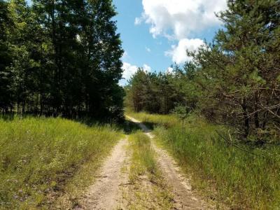 Photo of 000 Erwin Road, Copemish, MI 49625