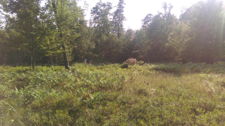 Michigan mason county custer - 11425 N Custer Road Free Soil Mi 49411