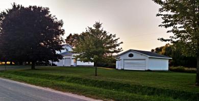 3166 E Wilson Road, Custer, MI 49405
