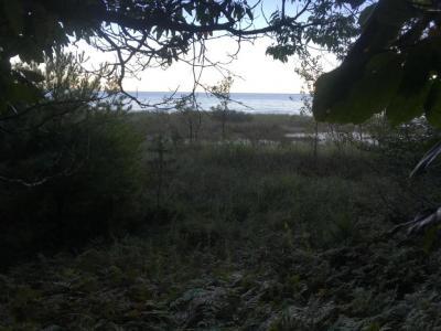 Photo of 1071 S Glen, Shelby, MI 49455
