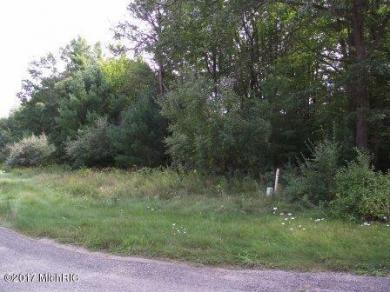 1238 Hillside Drive, Ludington, MI 49431