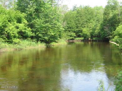 8965 N Water Wonderland Court, Branch, MI 49402