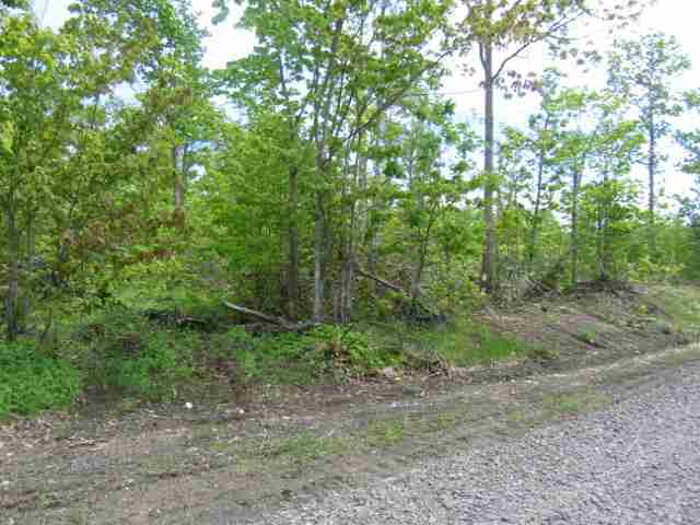 Lot 8 Off Us41, Mohawk, MI 49950