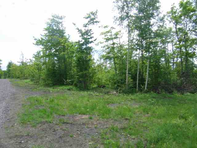 Lot 14 Off Us41, Mohawk, MI 49950