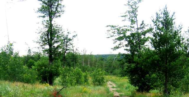 Lot A 2nd, Quinnesec, MI 49876