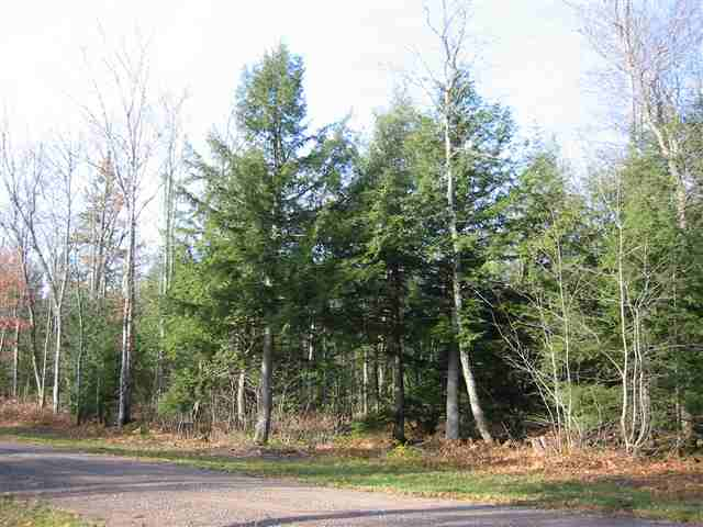 TBD Spikehorn Lot 13, Twin Lakes, MI 49965