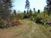 TBD Forest Rd 2127k, Iron River, MI 49935