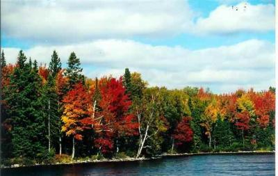 Photo of Lot 31 Secluded Point, Michigamme, MI 49861