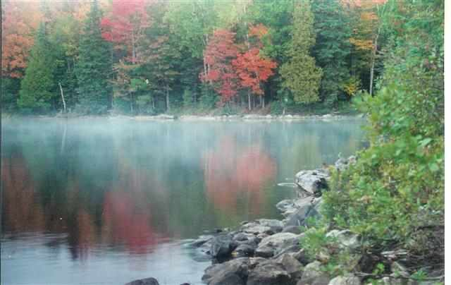 Lot 31 Secluded Point Lat 46.47314 Lon -88.19664, Michigamme, MI 49861