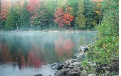 Photo of Lot 31 Secluded Point Lat 46.47314 Lon -88.19664, Michigamme, MI 49861