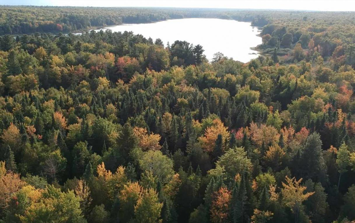 TBD Mud Lake, Lake Linden, MI 49945