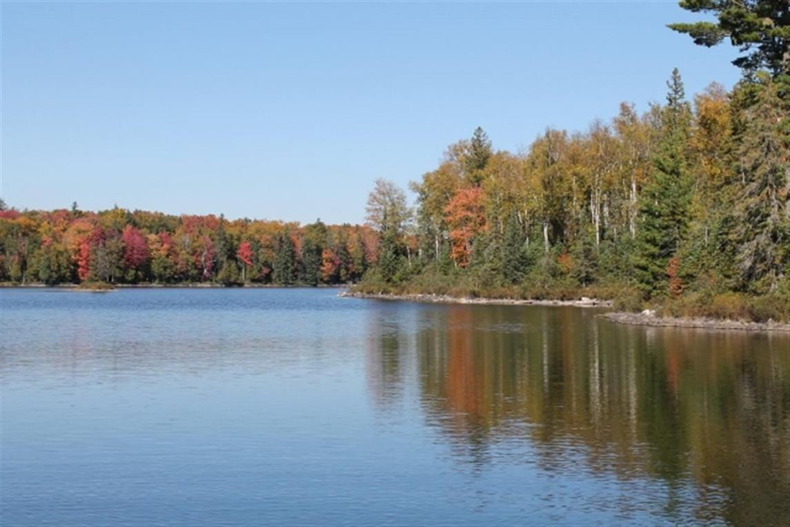 Lot 32 Secluded Point Lat 46.47246 Lon -88.19704, Michigamme, MI 49861