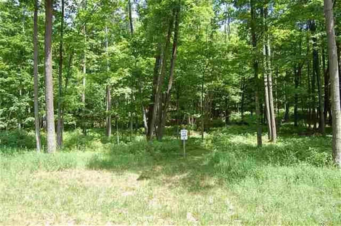 TBD Lower Bluff 6, Norway, MI 49870
