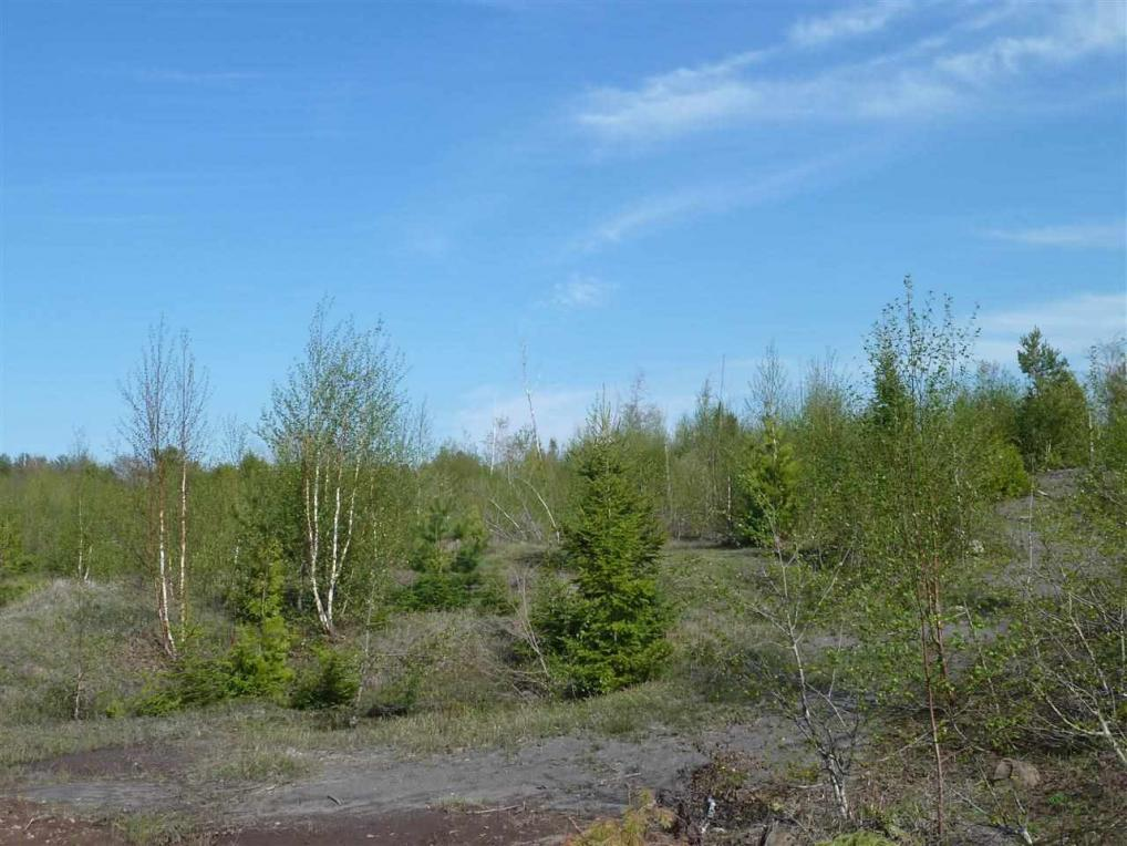 TBD 30 Oak Ridge Lot 30 Huron Creek, Houghton, MI 49931