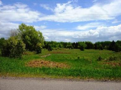 TBD Iron Lake 20.6 Acres Unit 2 Meadowood Shores Site Condo, Iron River, MI 49935
