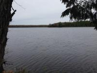TBD Elizabeth Unit 1, Iron River, MI 49935