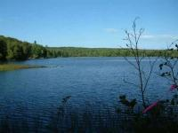 TBD Cable Lake Pcl 1, Crystal Falls, MI 49920