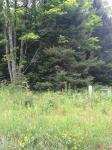 TBD Angeli Lot 19, Iron River, MI 49935