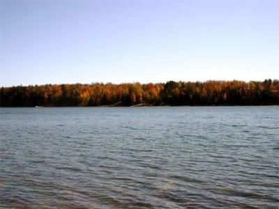 Photo of TBD University Pcl 4, Gov Lots 1 & 2, Iron River, MI 49935