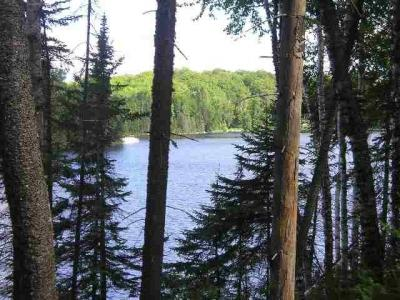 Photo of Lot 29 Secluded Point Lat 46.47515 Lon -88.19445, Michigamme, MI 49861