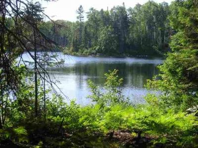 Photo of Lot 45A N Fence Lake Lots 35 And 45a Lat 46.47445 Lon -88.20012, Michigamme, MI 49861