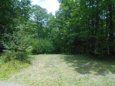 Photo of TBD Vital, Armstrong Creek, WI 54103