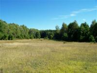 TBD Merriman West Parcel 2, Iron Mountain, MI 49801