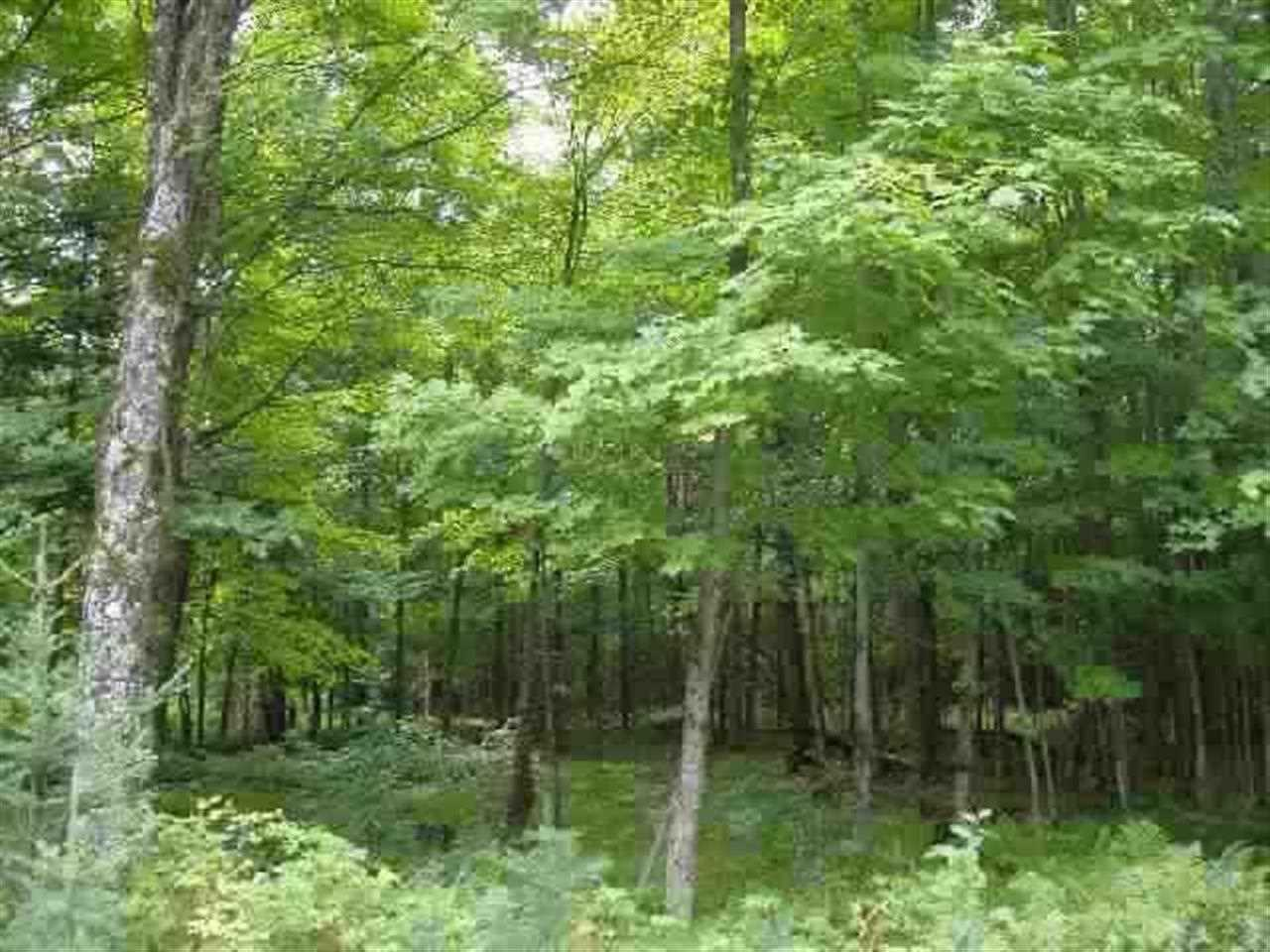 Mls 1098243 tbd twin rivers pcl 5 fence wi 54120 for Upper michigan real estate zillow