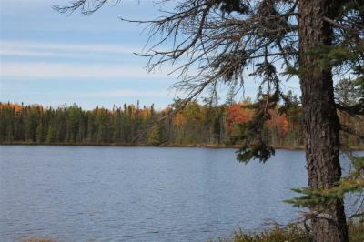Photo of TBD Voelker Lake Lat 46.37302 Lon -87.67223, Ishpeming, MI 49849