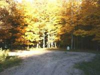 TBD Off Fordville Unit 27 Sturgeon River Site Condominium, Hardwood, MI 49807