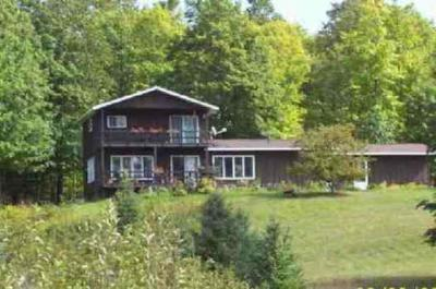 Photo of 343 E Lake Emily, Crystal Falls, MI 49920