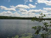 TBD Tamarack Lake Pcl 1, Watersmeet, MI 49969