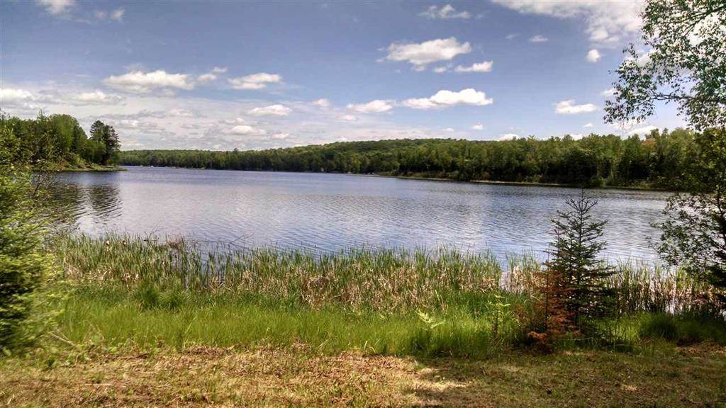 TBD W Brule Lake Pcl #5 & 6, Iron River, MI 49935