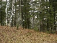 TBD Upper Pine Creek, Iron Mountain, MI 49801