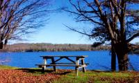 TBD Tamarack Lake Lot 12, Watersmeet, MI 49969