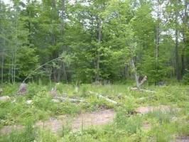 TBD Blome Helgren & Hh Lot W-3, Florence, WI 54121