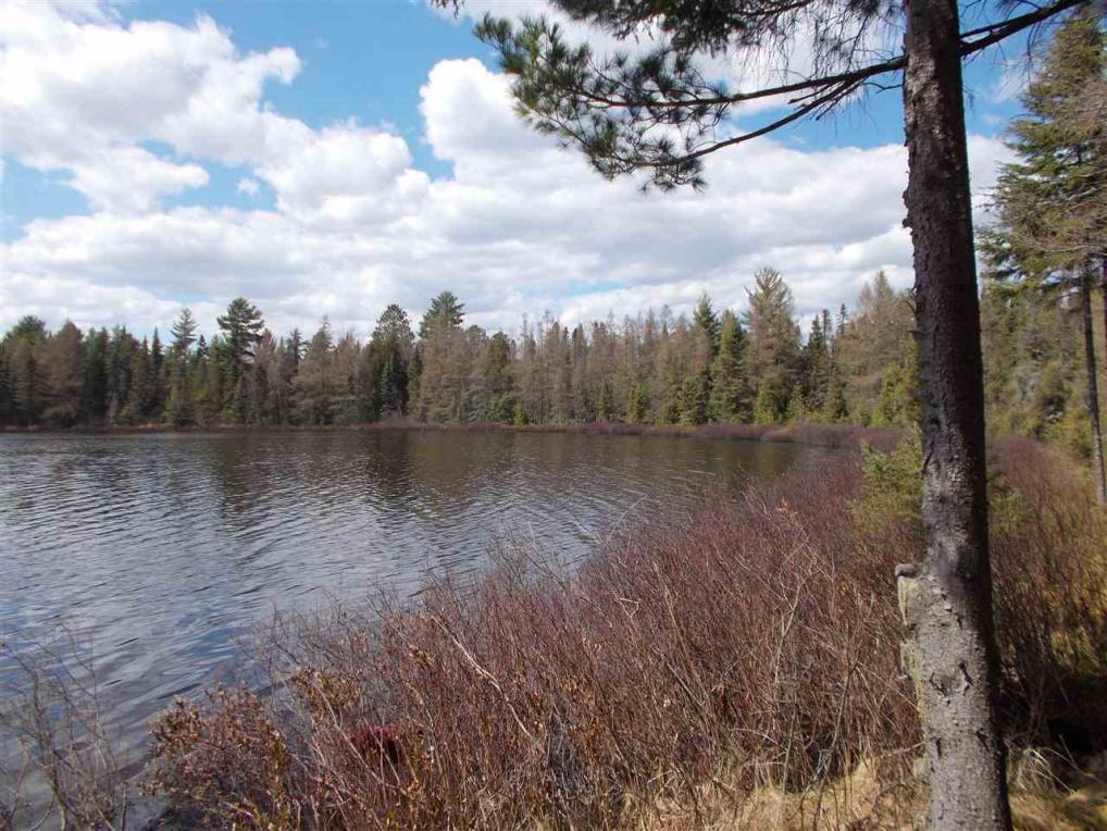 Mls 1101306 24 acres bass lake gwinn mi 49841 for Upper michigan real estate zillow