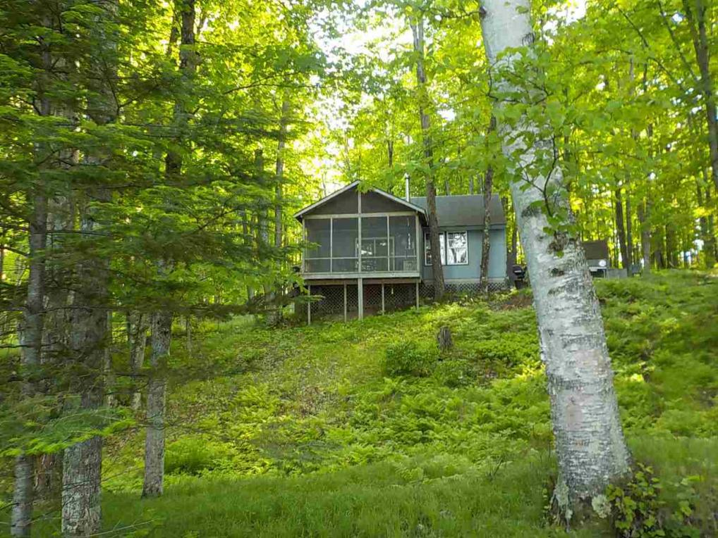340 Buck Lake Park, Crystal Falls, MI 49920