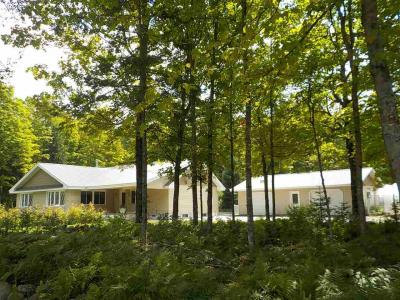 Photo of 547 Sheltrow, Crystal Falls, MI 49920