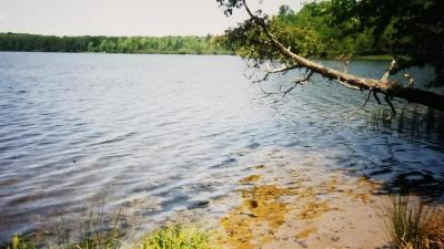 Photo of TBD Wildwood Lake Lots M & N, Iron River, MI 49935